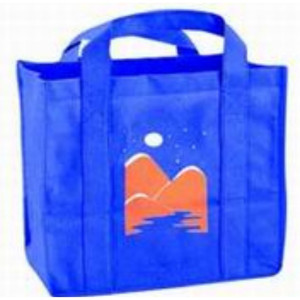 Promo Logo Canvas Bag
