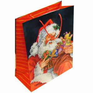 Promotional Gift Paper Bag