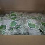 air freshener wholesaler
